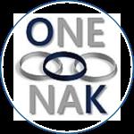 Onenak Consulting